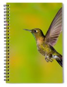 Tyrian Metaltail Hummingbird Spiral Notebook