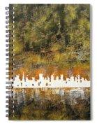 Urban Omega Spiral Notebook