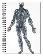 Vesalius: Nerves, 1543 Spiral Notebook