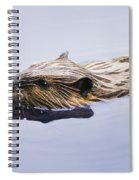 View Of Beaver, Chaudiere-appalaches Spiral Notebook