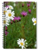 View Of Daisy Flowers In Meadow Spiral Notebook