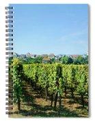 Vineyard, Alsace, France Spiral Notebook