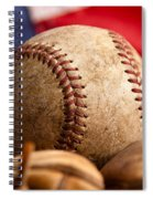 Vintage Baseball Spiral Notebook