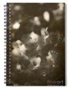 Vintage Floral Background Spiral Notebook