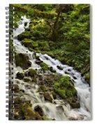 Wahkeena Creek Spiral Notebook