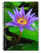 Water Lily 20 Spiral Notebook