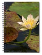 Water Lily 25 Spiral Notebook