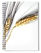 Wheat On White Spiral Notebook