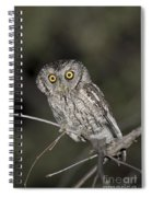 Whiskered Screech Owl Spiral Notebook