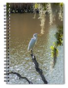 White Heron In Magnolia Cemetery Spiral Notebook