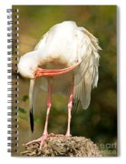 White Ibis Spiral Notebook