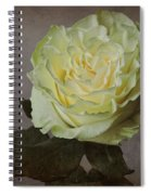 White Rose With Old Paper Texture Spiral Notebook