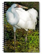 Whooping Crane Spiral Notebook