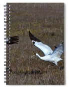 Whooping Cranes Spiral Notebook