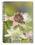 Wild Black Raspberry Blossom Spiral Notebook