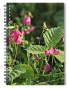 Wild Grass Flower Spiral Notebook