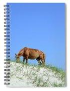 Wild Horses Of Corolla Spiral Notebook