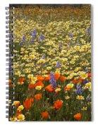 Wildflower Wonderland 9 Spiral Notebook