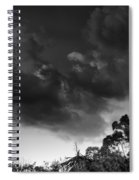 Windy Trees Spiral Notebook