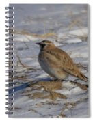 Winter Bird Spiral Notebook