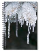 Winter Branches In Ice Spiral Notebook