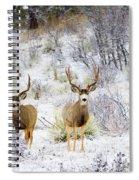 Winter Bucks Spiral Notebook