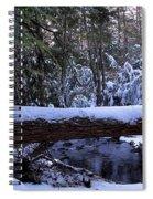 Winter Forest Stream Spiral Notebook
