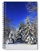 Winter Forest Under Snow Spiral Notebook