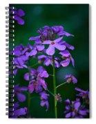 Winter Gilliflower Spiral Notebook
