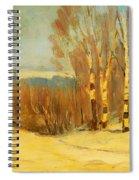 Winter Near Montreal Spiral Notebook