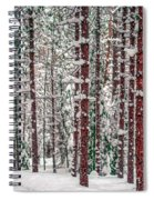 Winters Forest Spiral Notebook