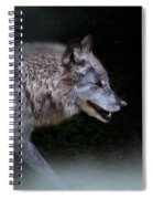 Wolf On The Prowl Spiral Notebook