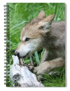 Wolf Pup Spiral Notebook