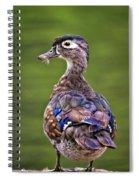 Wood Duck Juvenile Spiral Notebook