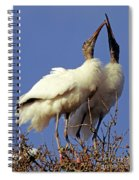 Wood Stork Courtship Display Spiral Notebook