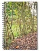 Woodland Path Spiral Notebook