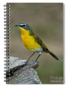 Yellow-breasted Chat Spiral Notebook
