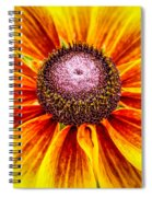 Yellow Daisy Spiral Notebook