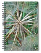 Yellow Goat's Beard Wildflower Seed Head - Tragopogon Dubius Spiral Notebook