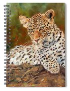 Young Leopard Spiral Notebook