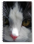Yue Up Close Spiral Notebook
