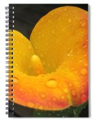 Zantedeschia Named Flame Spiral Notebook