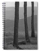 Blue Ridge Mountains - Virginia Bw 8 Spiral Notebook