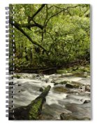 Jungle Stream Spiral Notebook
