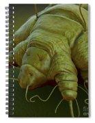 Scabies Mite Spiral Notebook