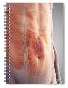 Ventral Hernia Spiral Notebook