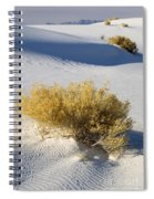 White Sands Spiral Notebook