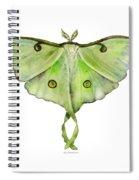 100 Luna Moth Spiral Notebook