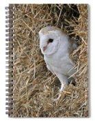 100205p201 Spiral Notebook