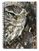 100205p259 Spiral Notebook